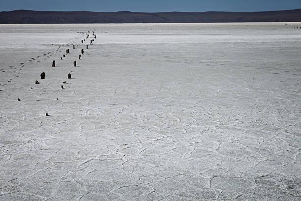 The dried salt lake stock photo