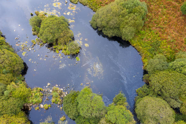 The drone view of a river flowing through an area of rural Scotland The view from a drone of a slow moving river flowing through the countryside, the location is Dumfries and Galloway. Although it is still summer some of the fern has turned orange. johnfscott stock pictures, royalty-free photos & images