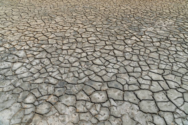 The dry soil of an old salt sea - environmental issue The dry soil of an old salt sea - environmental issue lake bed stock pictures, royalty-free photos & images