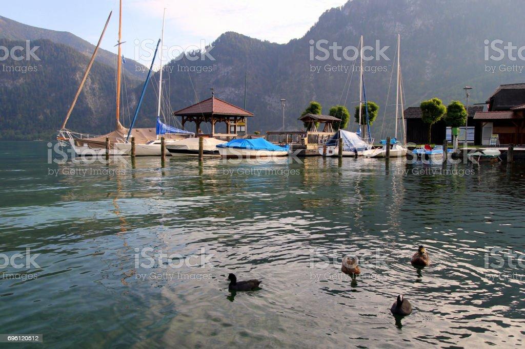 Die Enten auf dem See mit den Bergen und die Boote auf dem Hintergrund an sonnigen Tagen. – Foto