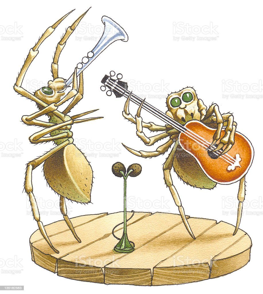 The duet of spiders royalty-free stock photo