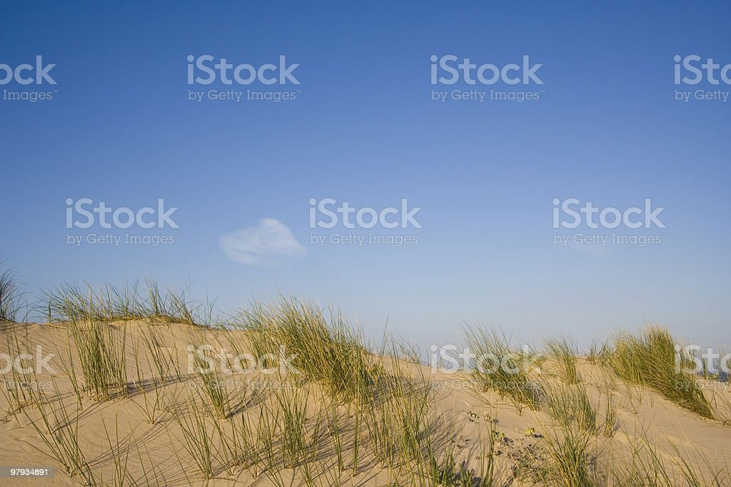 The Dune royalty-free stock photo
