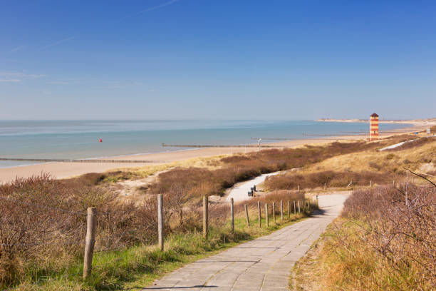 The dunes at Dishoek in Zeeland, The Netherlands stock photo