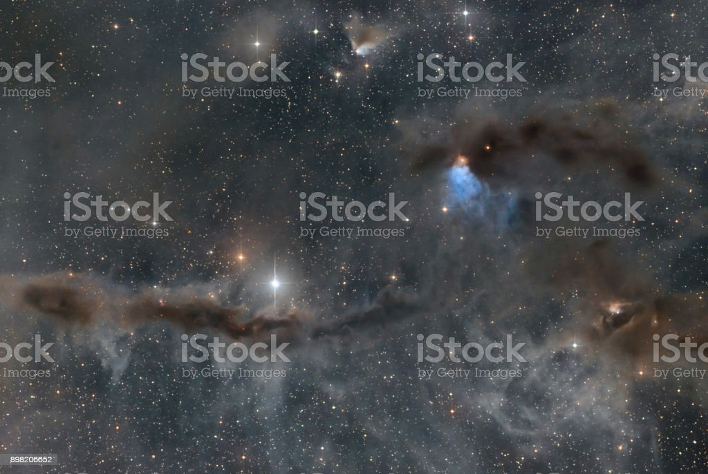 Die Dust Bunny, eine Reflexion-Nebel im Sternbild Stier (VdB 27) – Foto