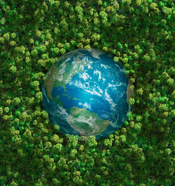 terra - green world imagens e fotografias de stock