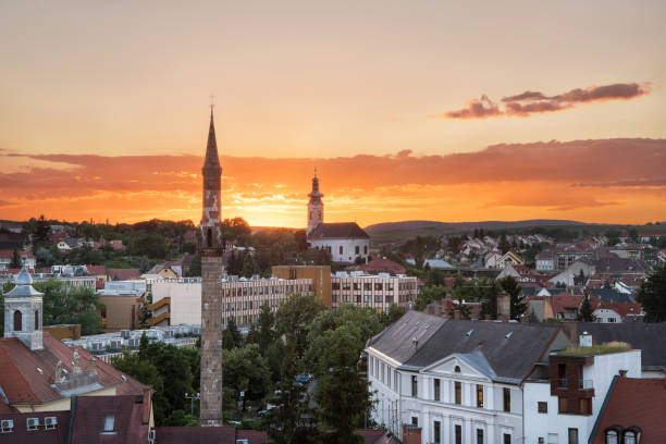 The Eger Minaret at sunset, Hungary The Eger Minaret at sunset from the Castle of Eger in Hungary minaret stock pictures, royalty-free photos & images