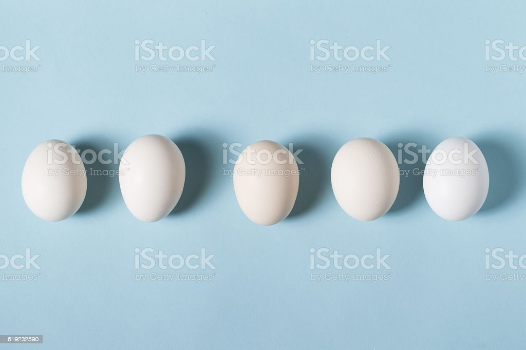 The egg is on the blue background. stock photo