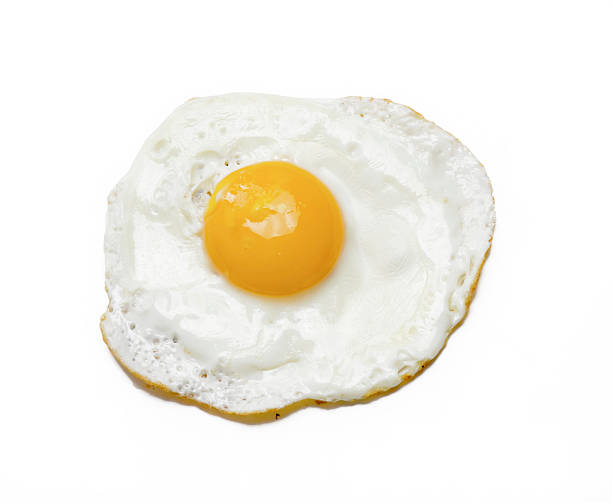 the egg. - fried egg stock photos and pictures