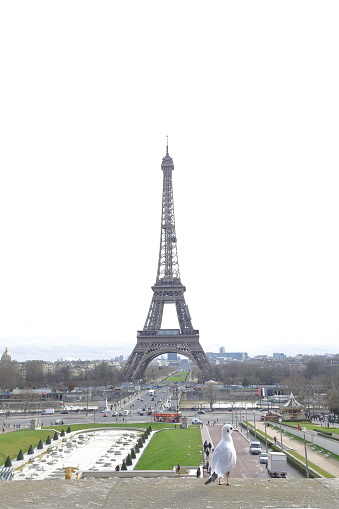 Der Eiffelturm Stockfoto und mehr Bilder von Eiffelturm