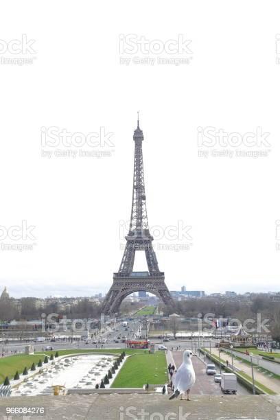 The Eiffel Tower - Fotografias de stock e mais imagens de Ao Ar Livre