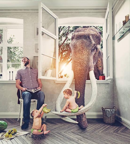 o elefante e os meninos - viagem pela vida selvagem - fotografias e filmes do acervo