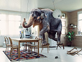 Frightened elephant runs from mouse to table. Photo and media mixed creative illustration