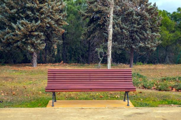 tomma bänken i parken - bench bildbanksfoton och bilder