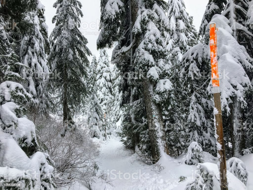 The empty snowy path of the Bowen Island Lookout trail with an orange trail marker stock photo