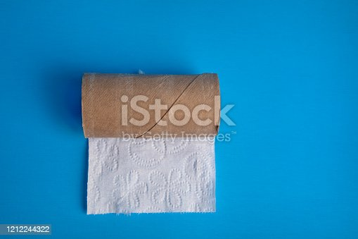 The last sheet of toilet paper on a roll isolated on a blue background with copy space.