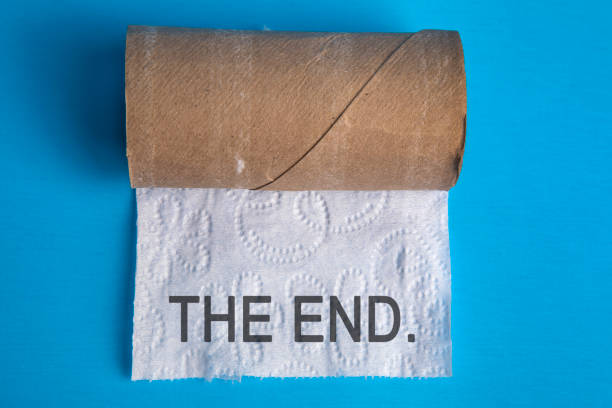the end of toilet paper - carta igienica foto e immagini stock