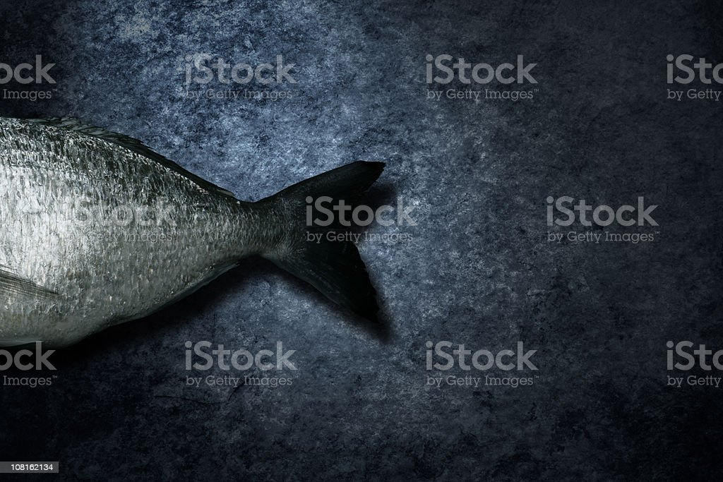 The end - seafood royalty-free stock photo