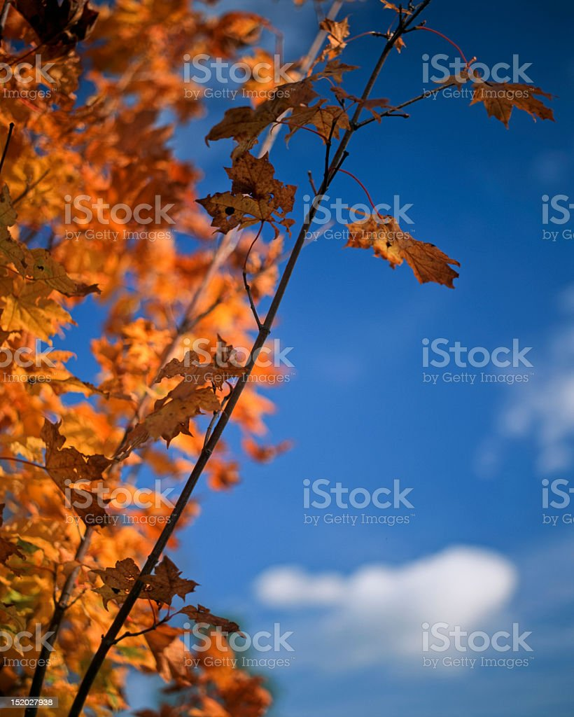 The ending royalty-free stock photo
