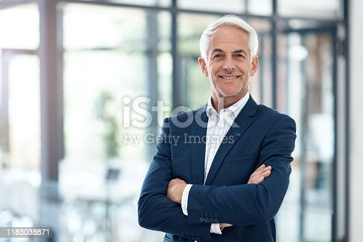 Portrait of a confident mature businessman working in a modern office