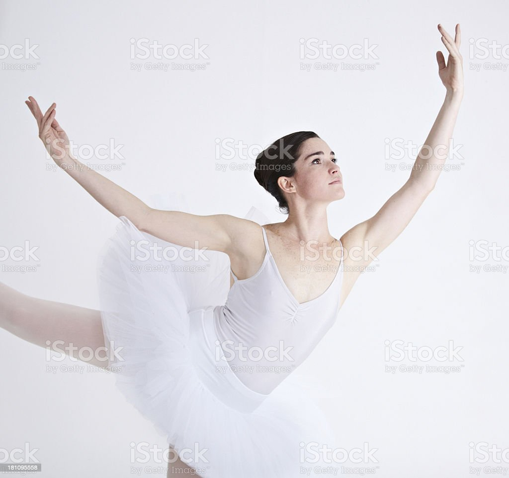 The epitome of elegance royalty-free stock photo