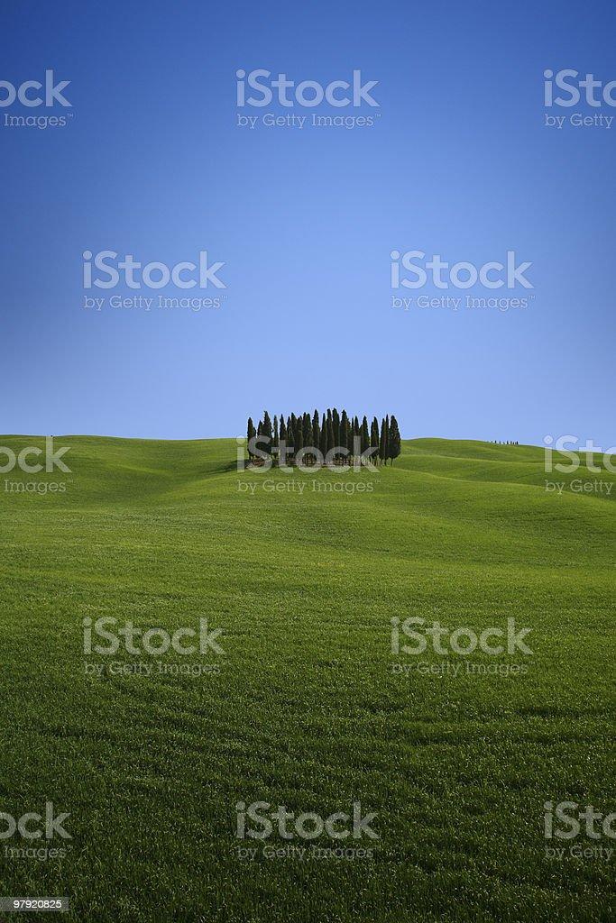 The essence of Tuscany. royalty-free stock photo