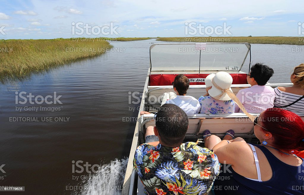 The everglades swamp stock photo