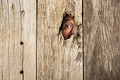istock The eye in wooden hole 480131742