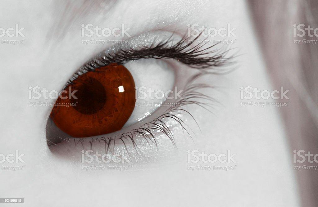 The eye of the vampire royalty-free stock photo