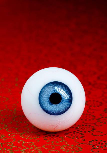 Die Auge – Foto