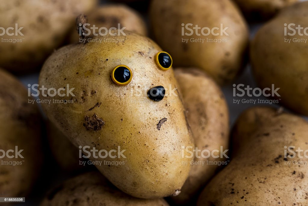 The face on the potato stock photo