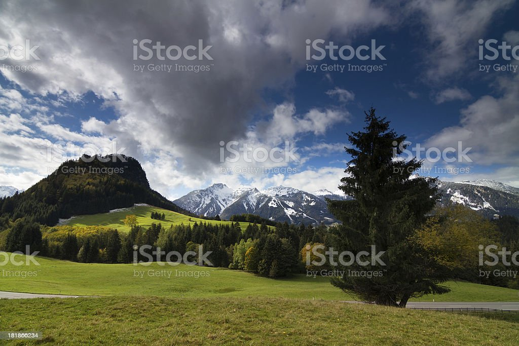 the fall is coming royalty-free stock photo