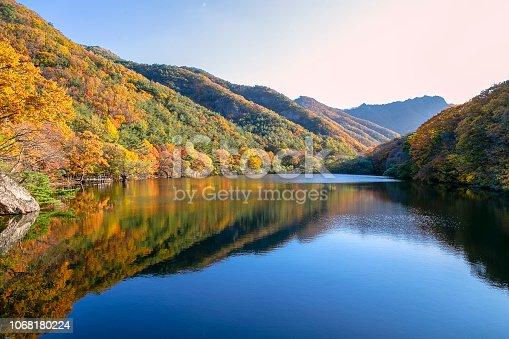 주산지의 아름다운 가을 풍경