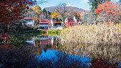 素敵な色、日本の長野県軽井沢の秋のシーズン