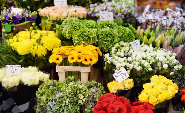 El famoso Amsterdam mercado de flores (Bloemenmarkt). - foto de stock