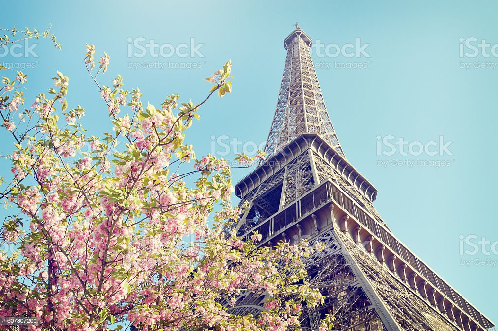 The famous Eiffel Tower with pink flowers in foreground stock photo