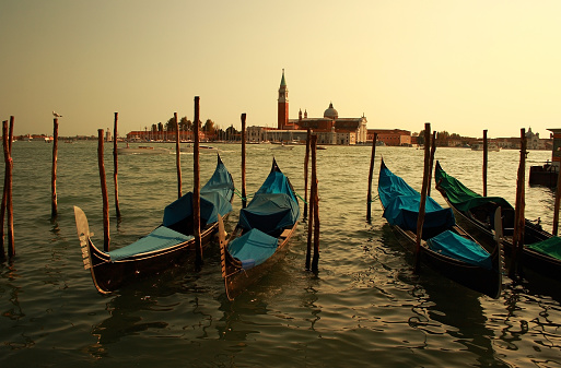 The famous Gondolas are parking on the Canal Grande