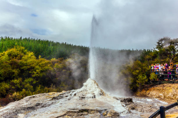 The famous Lady Knox geyser VALLEY OF GEYSERS ROTOROU, NEW ZEALAND - MARCH 24, 2018. The famous Lady Knox geyser rotorua stock pictures, royalty-free photos & images