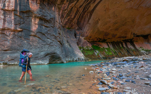 The Famous Narrows with the Virgin River in Zion National Park's Famous Canyon with Red Cliffs in Southern Utah USA stock photo