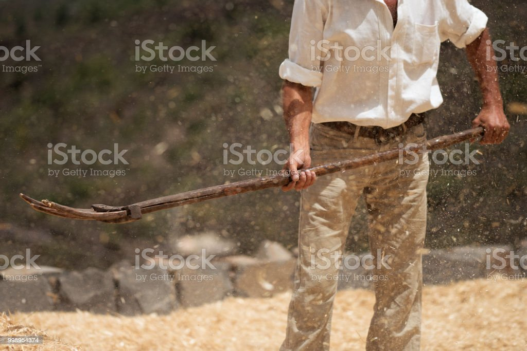 The farmer fanning wheat stock photo