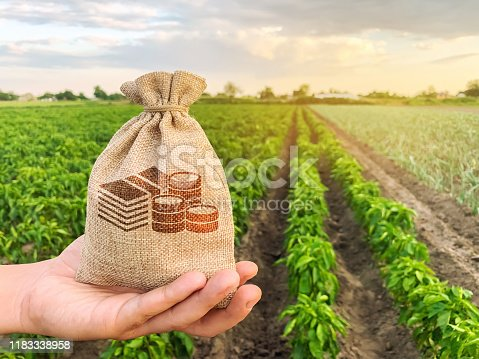 istock The farmer holds a money bag on the background of plantations. Lending and subsidizing farmers. Grants and support. Profit from agribusiness. Land value and rent. Taxes taxation. Agricultural startups 1183338958