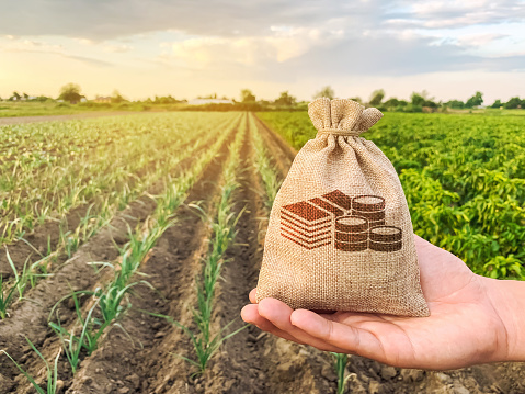istock The farmer holds a money bag on the background of plantations. Lending and subsidizing farmers. Grants and support. Profit from agribusiness. Land value and rent. Taxes taxation. Agricultural startups 1187320693
