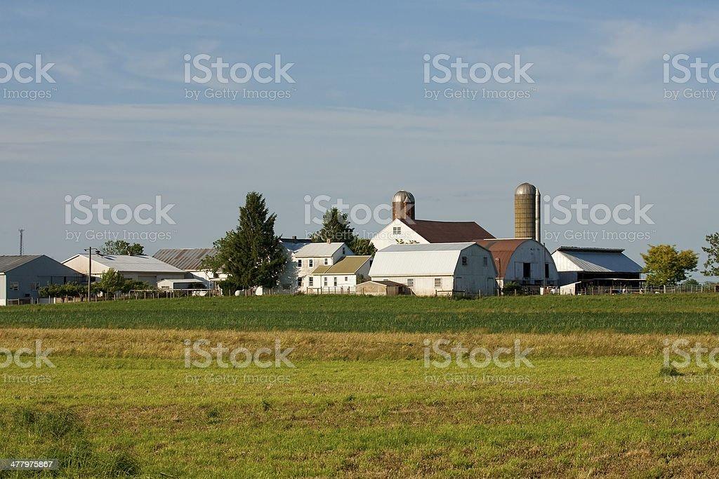 The Farmland royalty-free stock photo