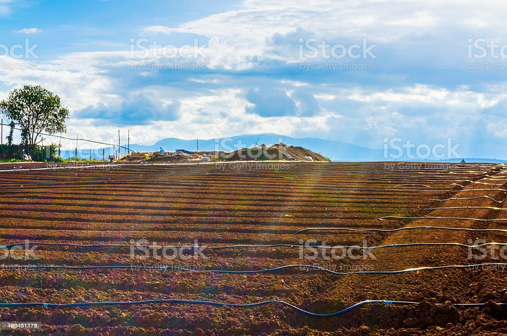 The farmland with lines water stock photo