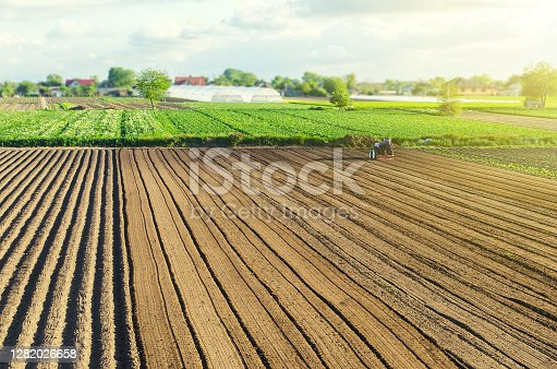 The farm's field is processed with agricultural machinery. Tractor with milling machine loosens, grinds, mixes soil. Farming and agriculture. Loosening surface, cultivating land for planting.