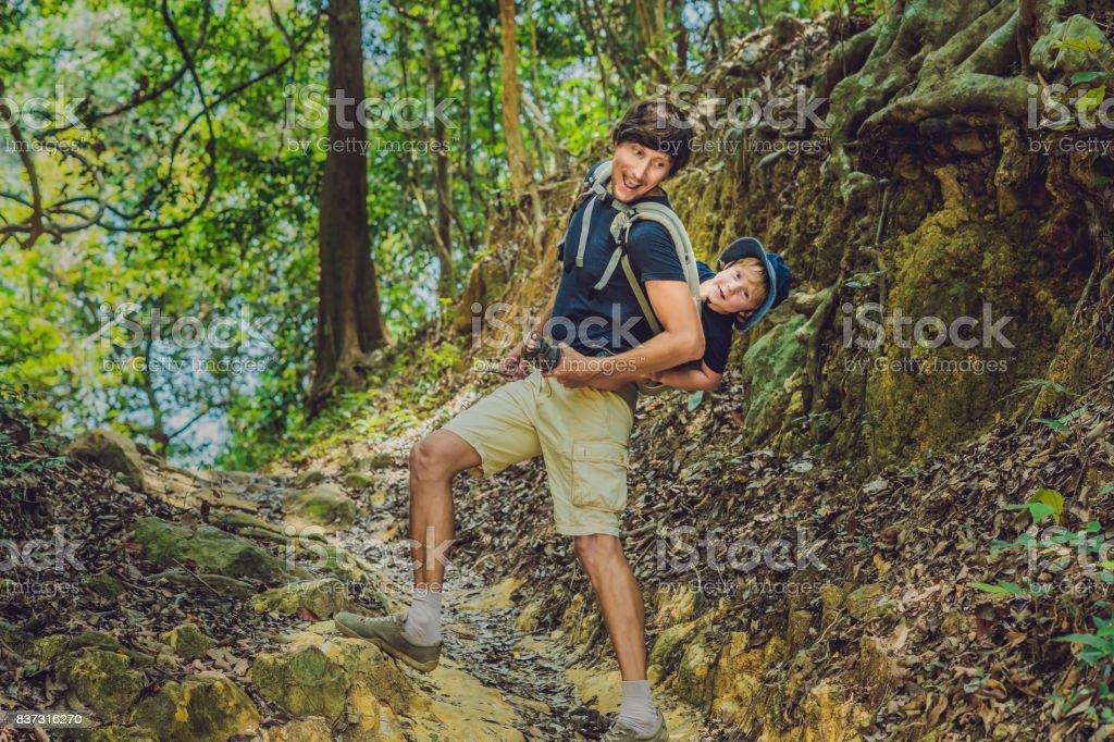 La porte du père son fils chez un bébé portant est randonnée dans la forêt. 8bd31f28ffc
