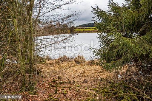 The frozen pond near the village of Thommen, Belgium in February