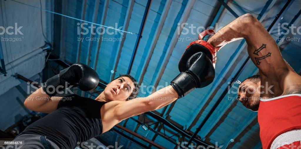 O boxer feminino e afro americano boxer masculino - foto de acervo