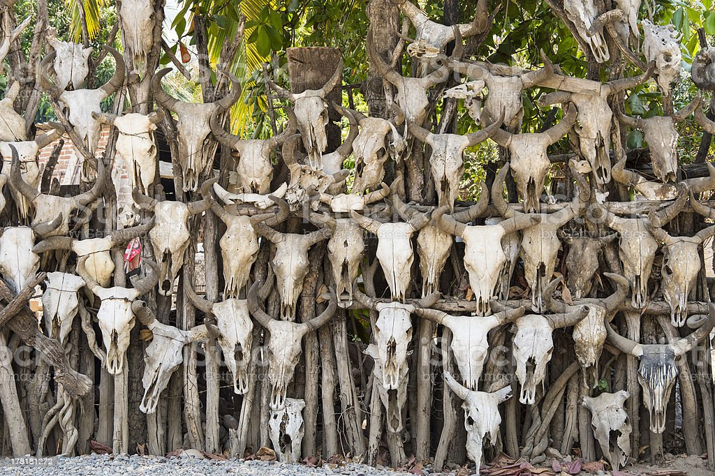 The Fence of Skulls royalty-free stock photo