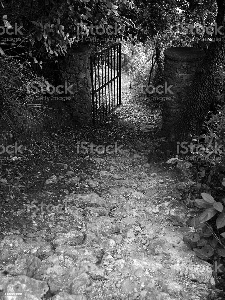 The fence royalty-free stock photo