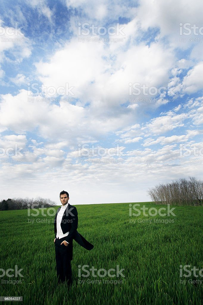 The Field royalty-free stock photo
